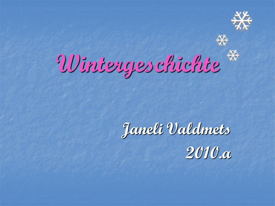 Wintergeschichte Janeli Valdmets 2010.a