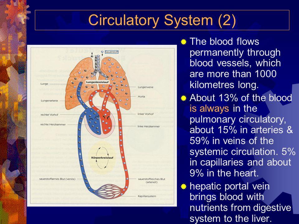 Circulatory System (1) The Heart pumps the blood through a double circulatory system. The journey of the blood: systemic circulation (Körperkreislauf)