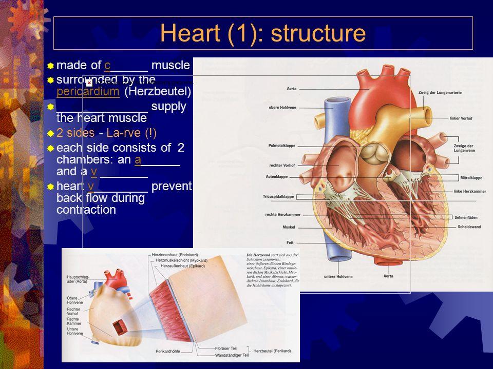 Bluthochdruck und niederer Blutdruck Niederer Blutdruck (Hypotonie) ist nicht immer spürbar, denn nicht immer macht er Probleme.