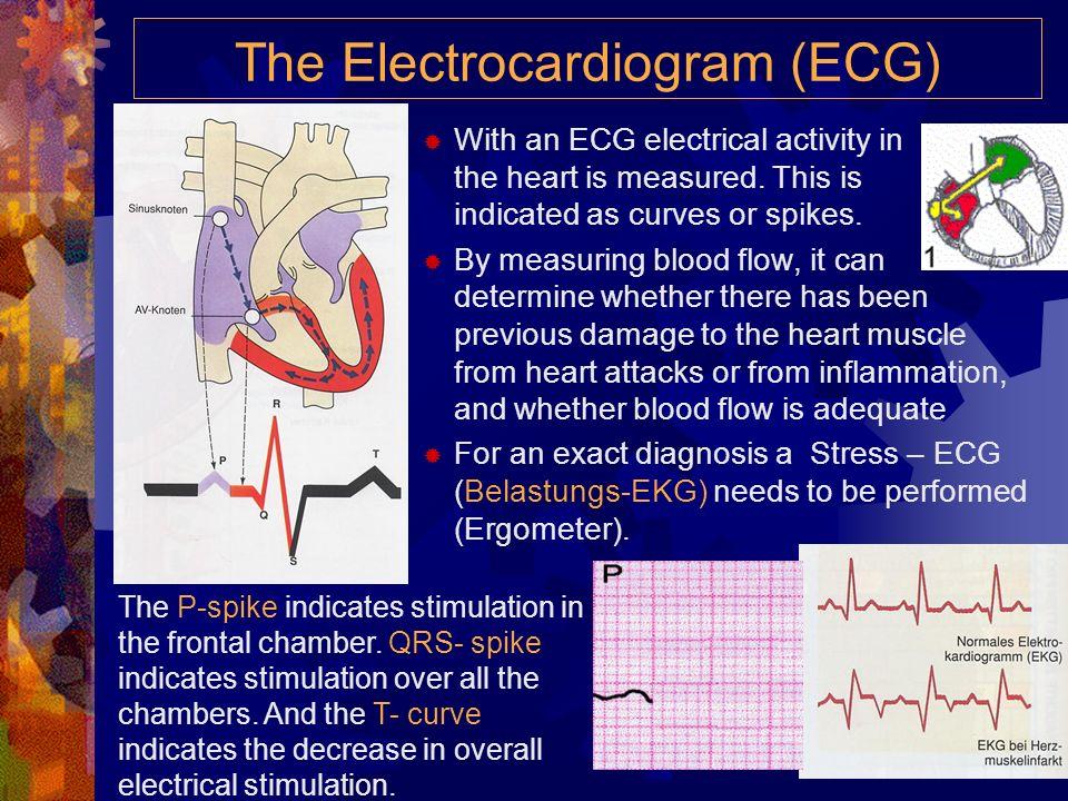 High and Low Blood Pressure Niederer Blutdruck (Hypotonie) ist nicht immer spürbar, denn nicht immer macht er Probleme. Häufig treten aber folgende Be