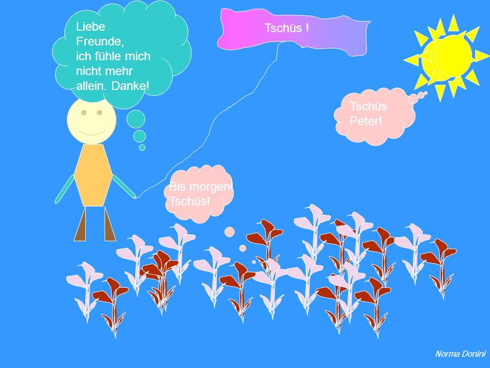 Liebe Freunde, ich fühle mich nicht mehr allein. Danke! Bis morgen! Tschüs! Tschüs Peter! Tschüs ! Norma Donini