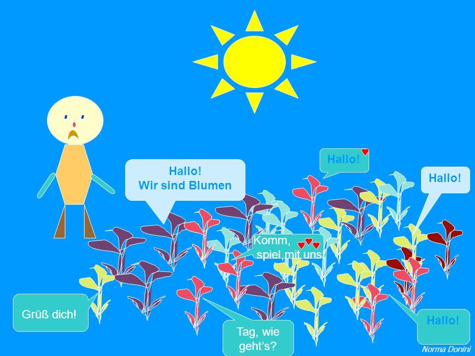 Hallo! Wir sind Blumen Hallo! Grüß dich! Tag, wie gehts? Komm, spiel mit uns! Hallo! Norma Donini