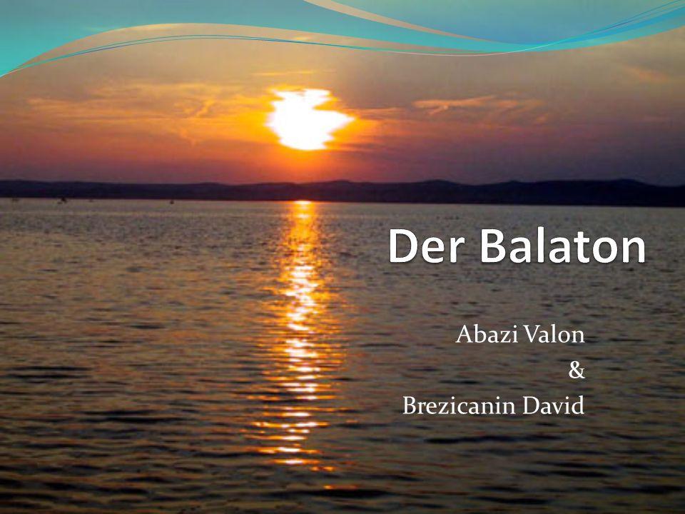 Abazi Valon & Brezicanin David