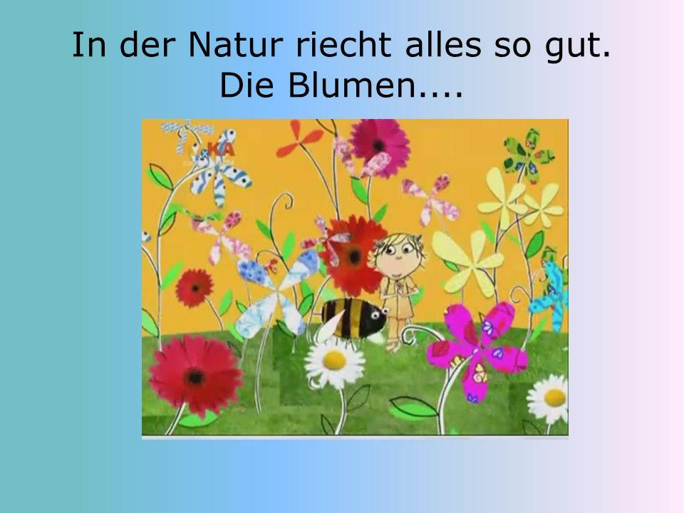 In der Natur riecht alles so gut. Die Blumen....