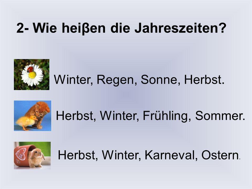 2- Wie heiβen die Jahreszeiten.Winter, Regen, Sonne, Herbst.