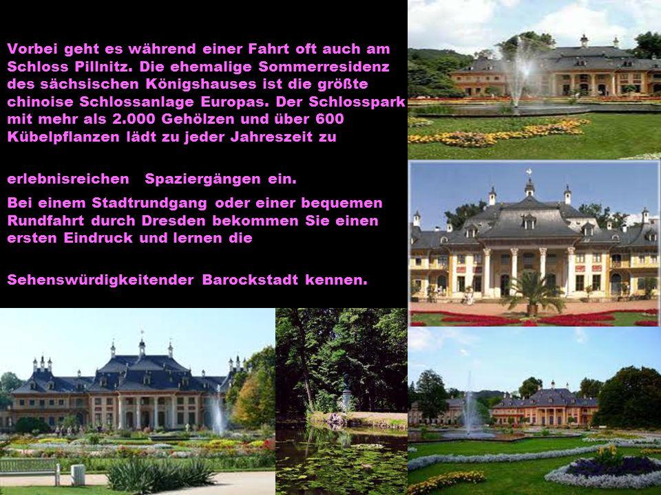 Vorbei geht es während einer Fahrt oft auch am Schloss Pillnitz. Die ehemalige Sommerresidenz des sächsischen Königshauses ist die größte chinoise Sch