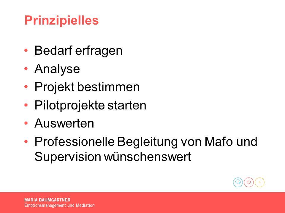 Prinzipielles Bedarf erfragen Analyse Projekt bestimmen Pilotprojekte starten Auswerten Professionelle Begleitung von Mafo und Supervision wünschenswert