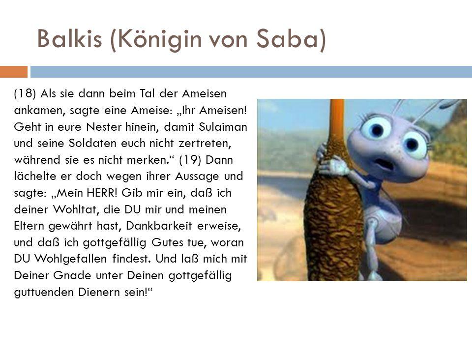 Balkis (Königin von Saba) (18) Als sie dann beim Tal der Ameisen ankamen, sagte eine Ameise: Ihr Ameisen! Geht in eure Nester hinein, damit Sulaiman u