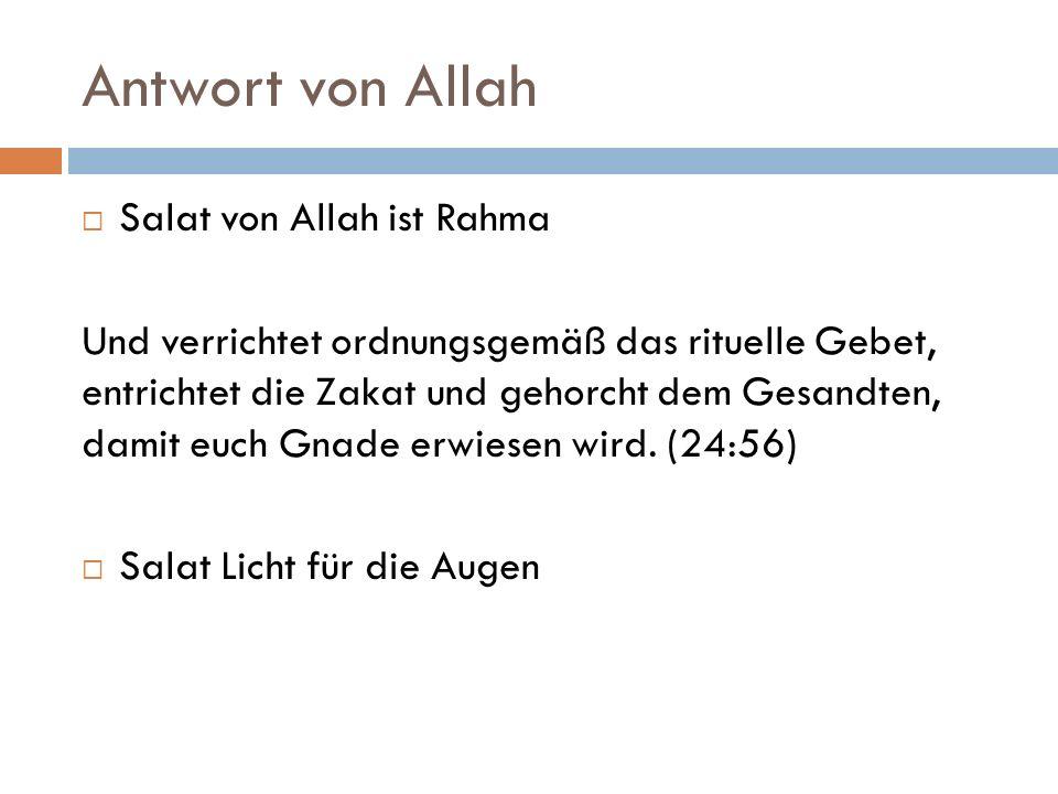 Antwort von Allah Salat von Allah ist Rahma Und verrichtet ordnungsgemäß das rituelle Gebet, entrichtet die Zakat und gehorcht dem Gesandten, damit eu