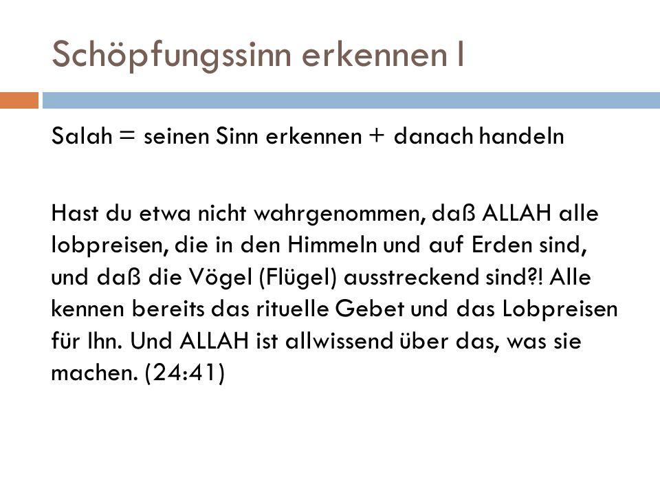 Schöpfungssinn erkennen I Salah = seinen Sinn erkennen + danach handeln Hast du etwa nicht wahrgenommen, daß ALLAH alle lobpreisen, die in den Himmeln
