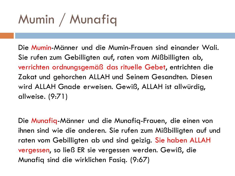 Mumin / Munafiq Die Mumin-Männer und die Mumin-Frauen sind einander Wali. Sie rufen zum Gebilligten auf, raten vom Mißbilligten ab, verrichten ordnung
