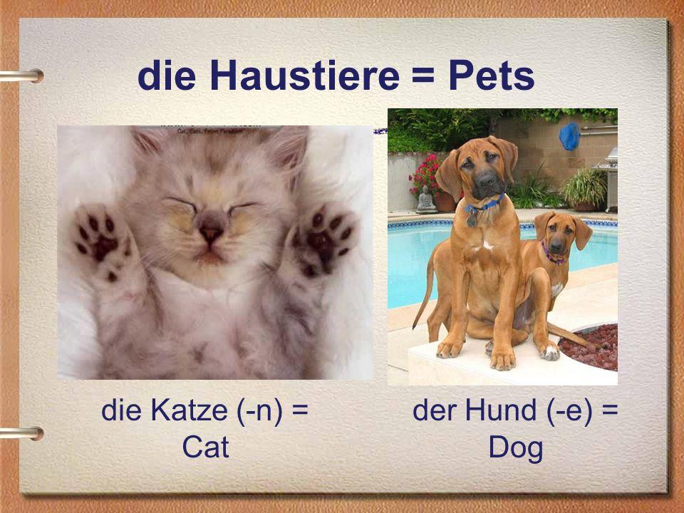 die Haustiere = Pets die Katze (-n) = Cat der Hund (-e) = Dog