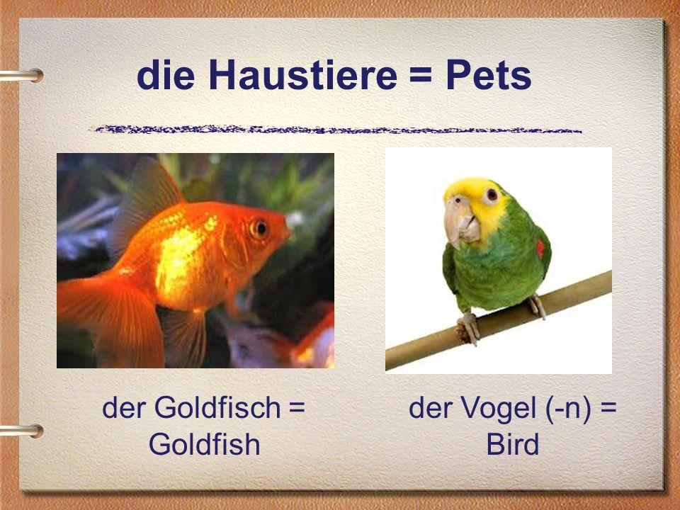 die Haustiere = Pets der Goldfisch = Goldfish der Vogel (-n) = Bird