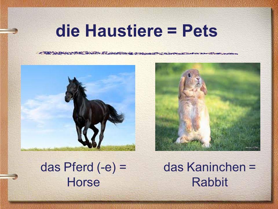 die Haustiere = Pets das Pferd (-e) = Horse das Kaninchen = Rabbit