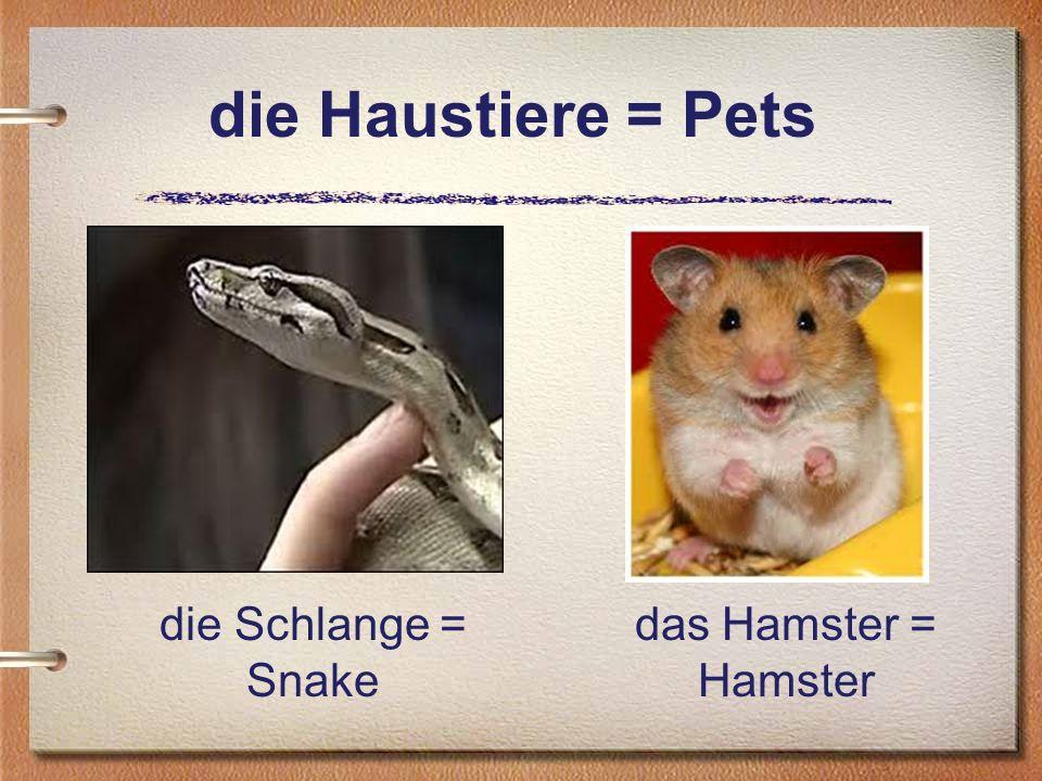 die Haustiere = Pets die Schlange = Snake das Hamster = Hamster