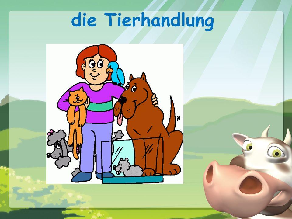 Complete the following sentences: 1.In meiner Stadt gibt es ________ Schule und ________ Kino.
