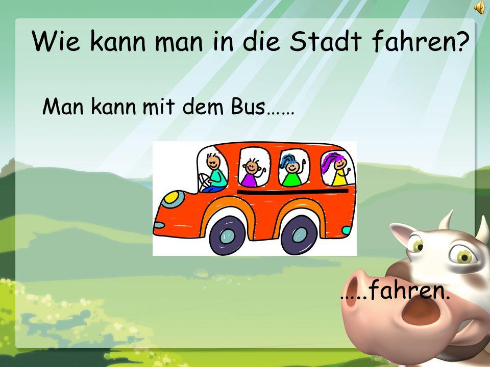 Wie kann man in die Stadt fahren? Man kann mit dem Bus…… …..fahren.