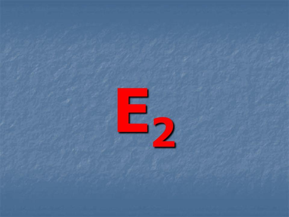 E2E2E2E2