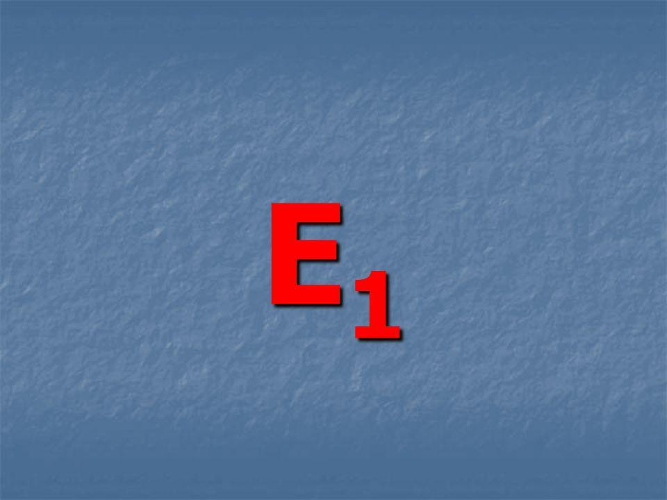 E1E1E1E1