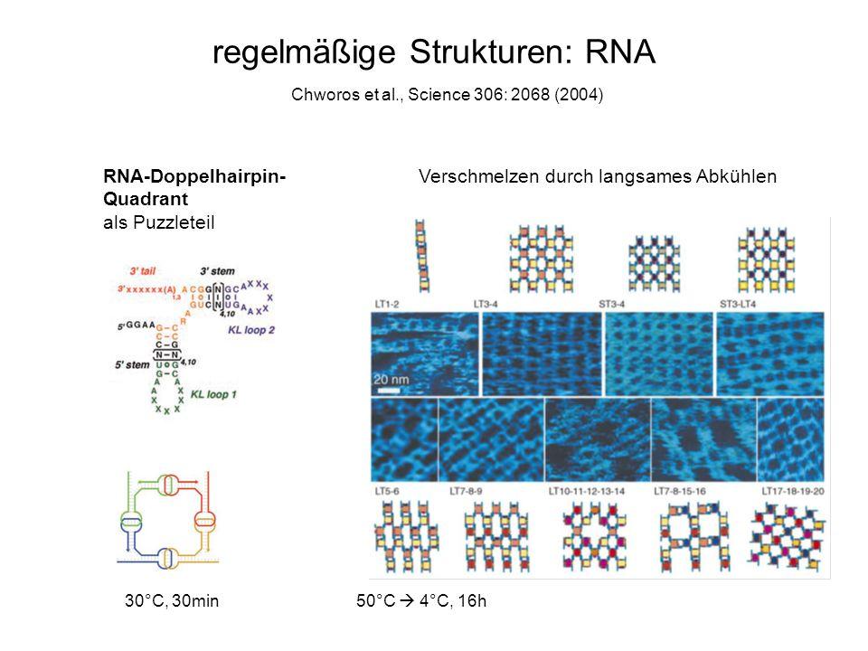 regelmäßige Strukturen: RNA Chworos et al., Science 306: 2068 (2004) RNA-Doppelhairpin- Quadrant als Puzzleteil Verschmelzen durch langsames Abkühlen