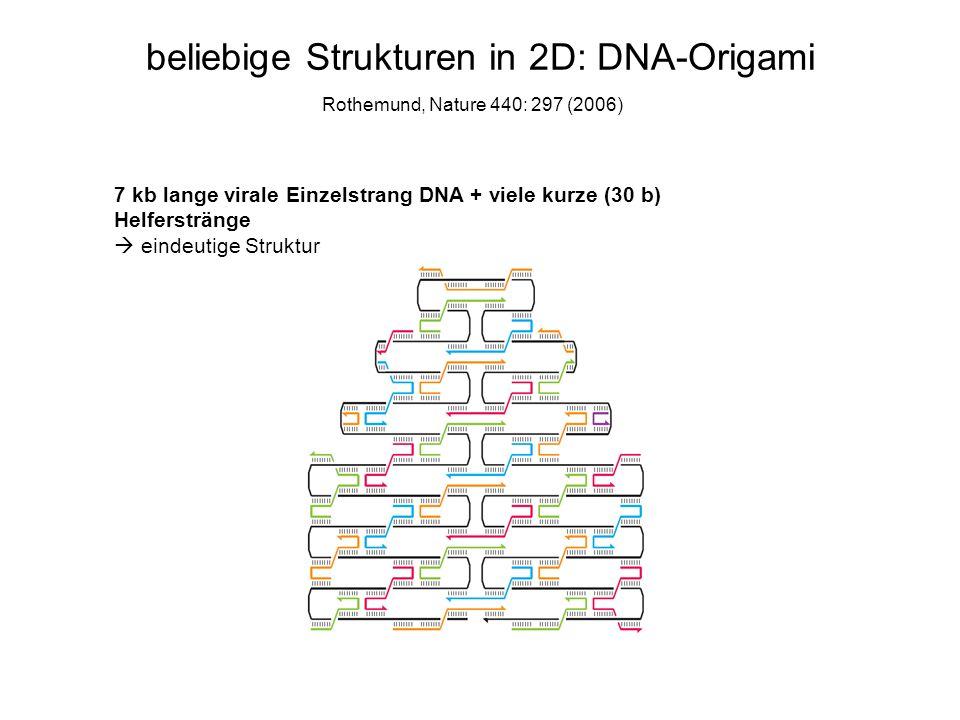beliebige Strukturen in 2D: DNA-Origami 7 kb lange virale Einzelstrang DNA + viele kurze (30 b) Helferstränge eindeutige Struktur Rothemund, Nature 44
