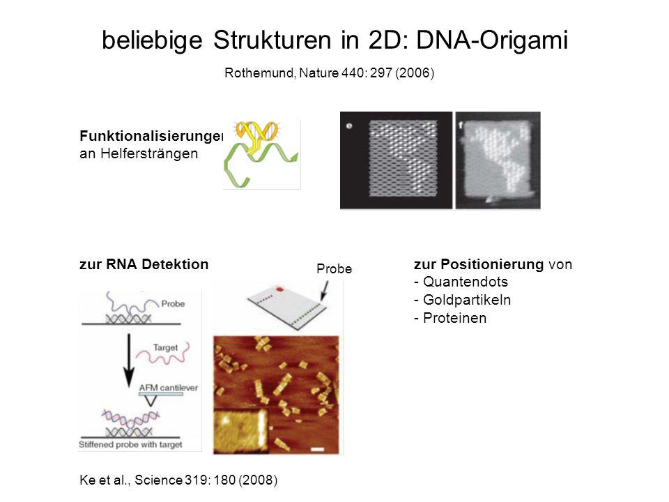 beliebige Strukturen in 2D: DNA-Origami Funktionalisierungen an Helfersträngen Rothemund, Nature 440: 297 (2006) zur RNA Detektion Probe Ke et al., Sc