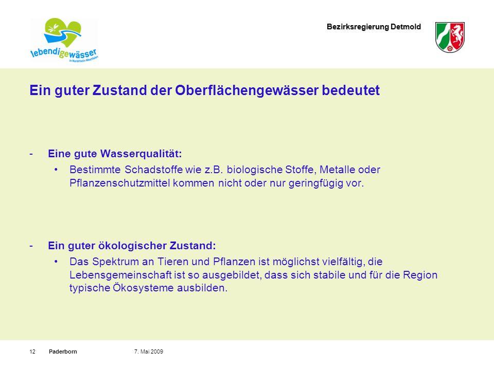 Bezirksregierung Detmold Paderborn127. Mai 2009 Ein guter Zustand der Oberflächengewässer bedeutet Eine gute Wasserqualität: Bestimmte Schadstoffe wie