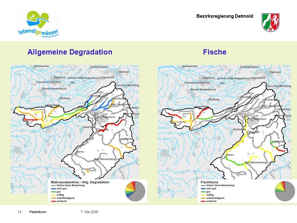 Bezirksregierung Detmold Paderborn137. Mai 2009 Allgemeine DegradationFische
