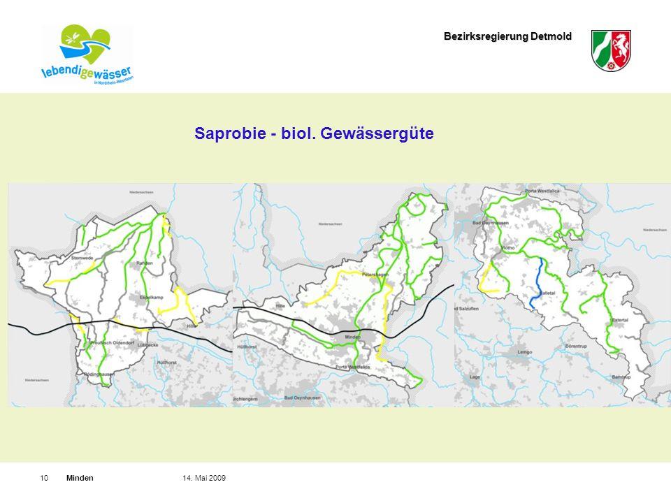 Bezirksregierung Detmold Minden1014. Mai 2009 Saprobie - biol. Gewässergüte