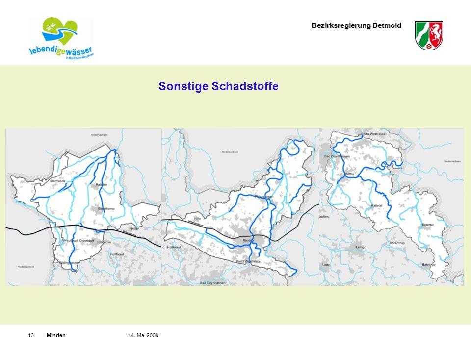 Bezirksregierung Detmold Minden1314. Mai 2009 Sonstige Schadstoffe