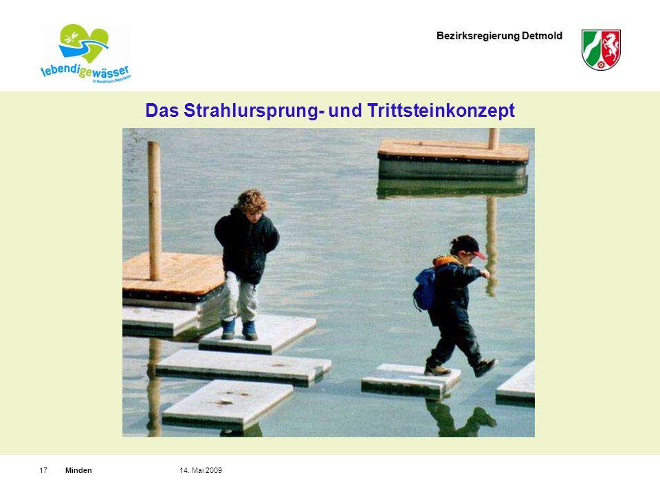 Bezirksregierung Detmold Minden1714. Mai 2009 Das Strahlursprung- und Trittsteinkonzept