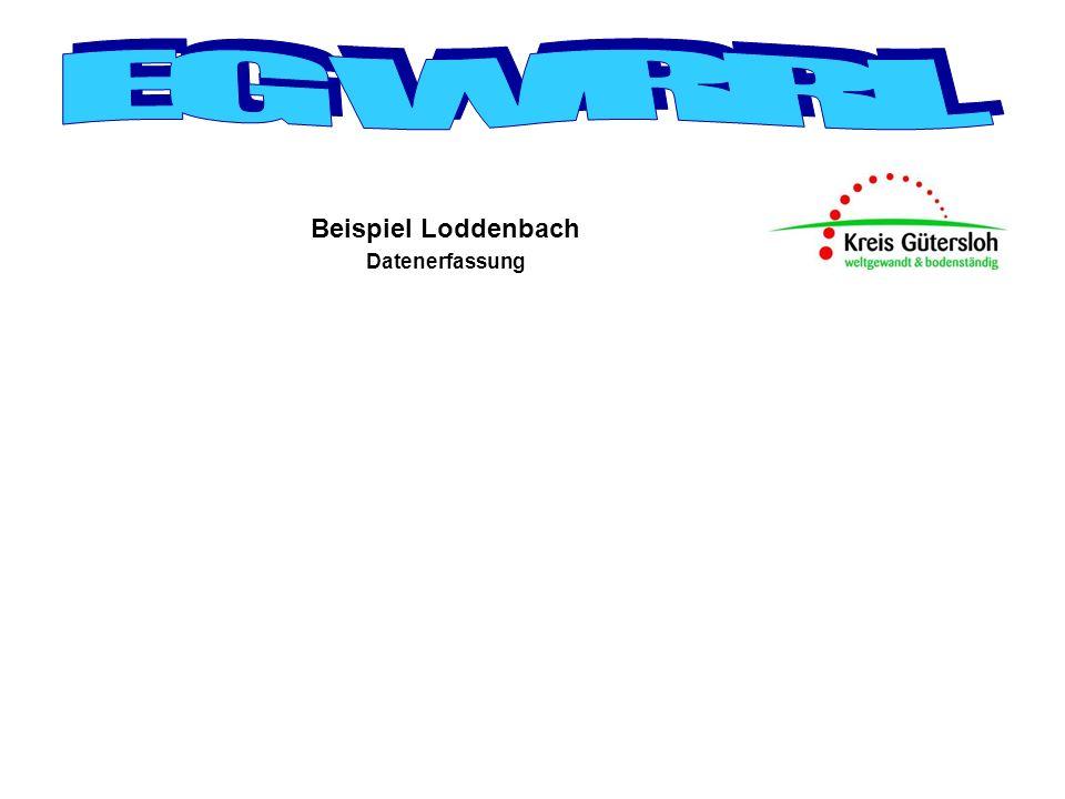 Beispiel Loddenbach Datenerfassung