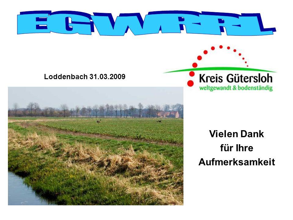 Loddenbach 31.03.2009 Vielen Dank für Ihre Aufmerksamkeit