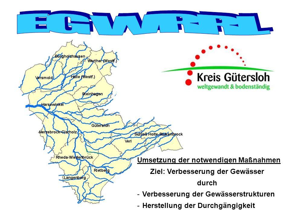 -Herstellung der Durchgängigkeit Ziel: Verbesserung der Gewässer Umsetzung der notwendigen Maßnahmen durch -Verbesserung der Gewässerstrukturen