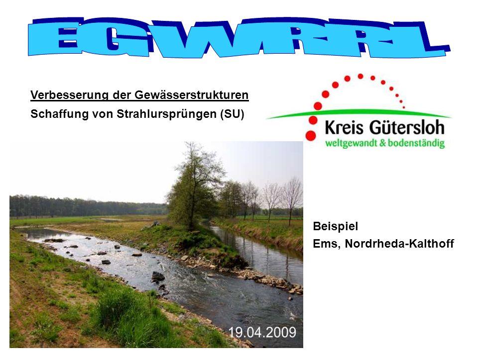 Schaffung von Strahlursprüngen (SU) Verbesserung der Gewässerstrukturen Beispiel Ems, Nordrheda-Kalthoff