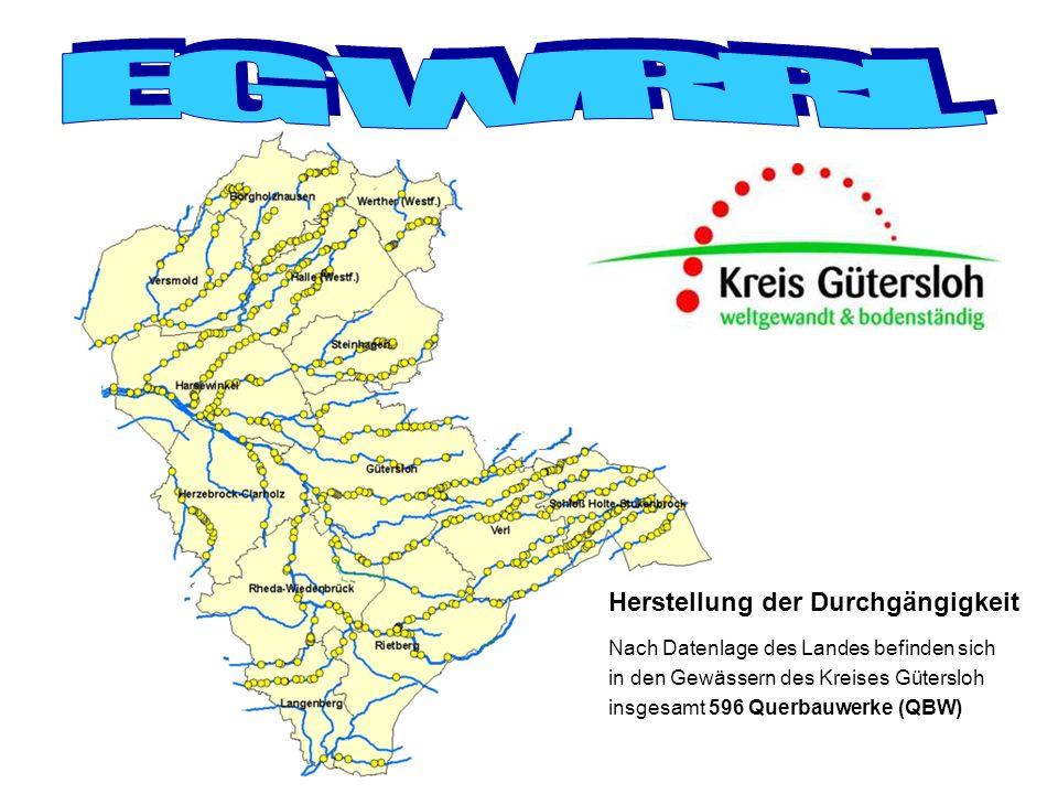 Ergebnis: 7 QBW mit Handlungsbedarf Herstellung der Durchgängigkeit Verbesserung der Struktur Nach Datenlage des Landes befinden sich im Loddenbach 21 QBW Beispiel Loddenbach 1.