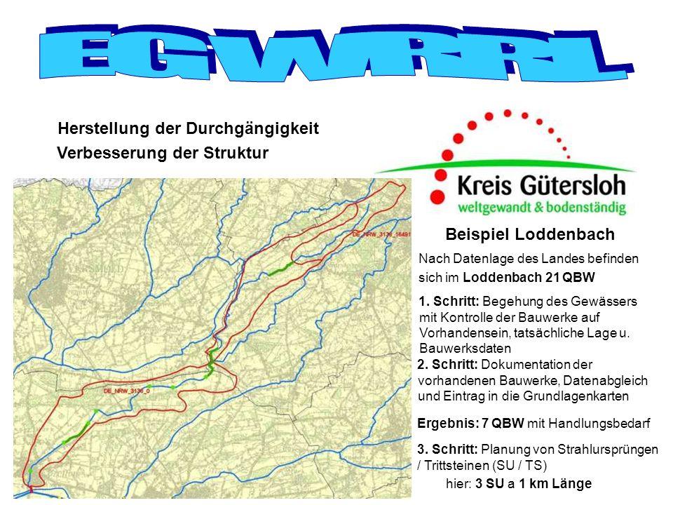 Ergebnis: 7 QBW mit Handlungsbedarf Herstellung der Durchgängigkeit Verbesserung der Struktur Nach Datenlage des Landes befinden sich im Loddenbach 21