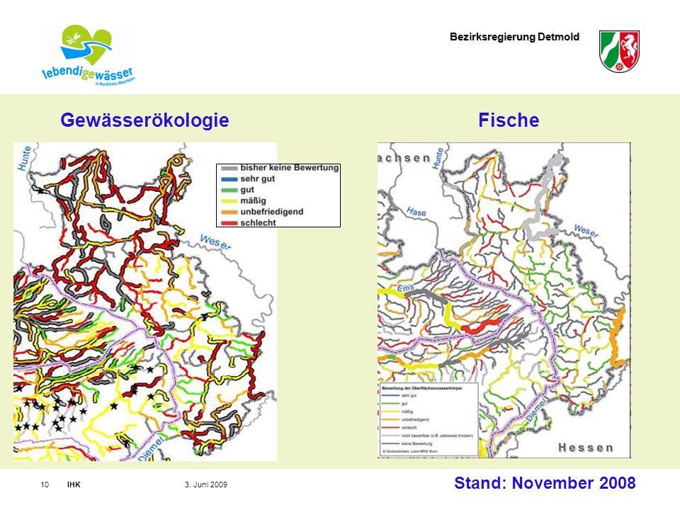 Bezirksregierung Detmold IHK103. Juni 2009 Stand: November 2008 GewässerökologieFische