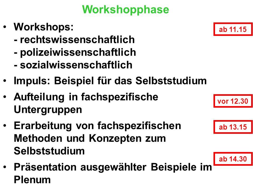 Workshopphase Workshops: - rechtswissenschaftlich - polizeiwissenschaftlich - sozialwissenschaftlich Impuls: Beispiel für das Selbststudium Aufteilung