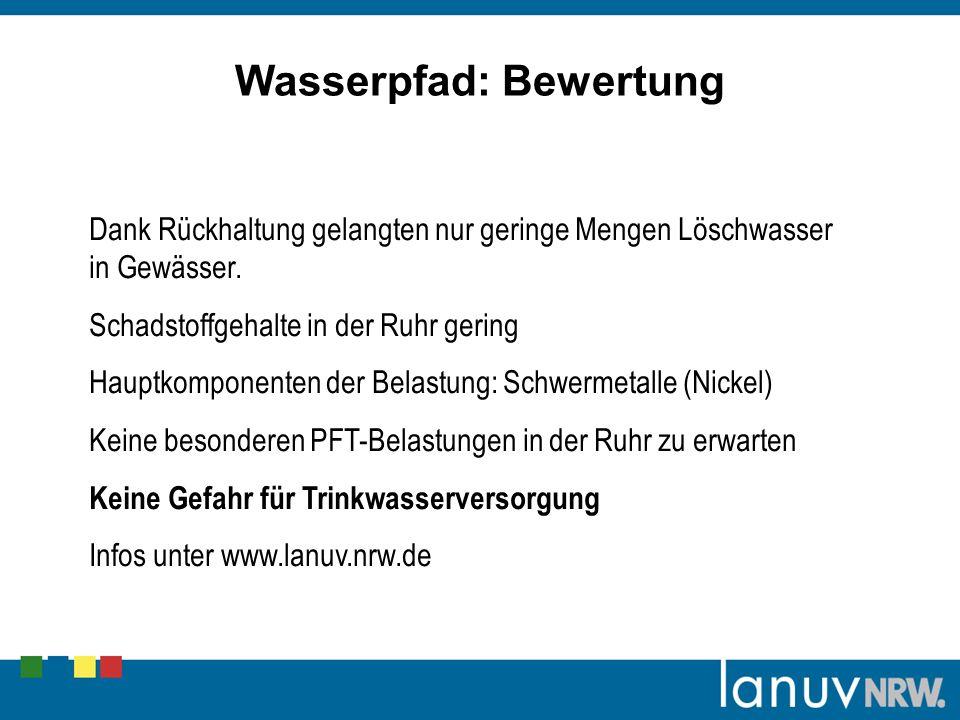 Dank Rückhaltung gelangten nur geringe Mengen Löschwasser in Gewässer. Schadstoffgehalte in der Ruhr gering Hauptkomponenten der Belastung: Schwermeta