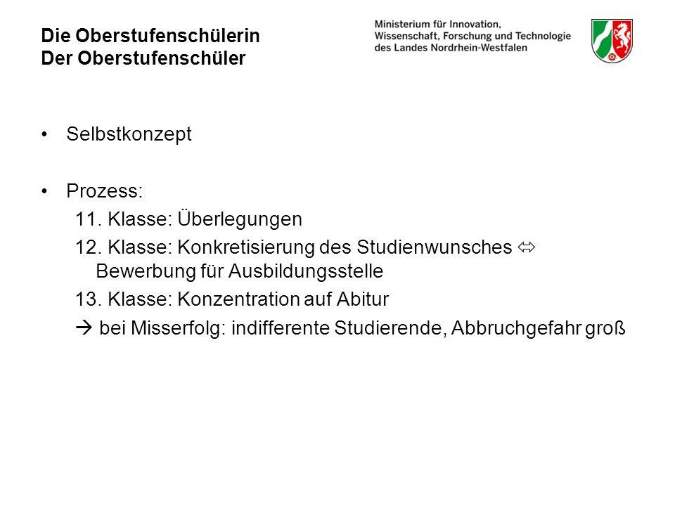 Die Oberstufenschülerin Der Oberstufenschüler Selbstkonzept Prozess: 11.
