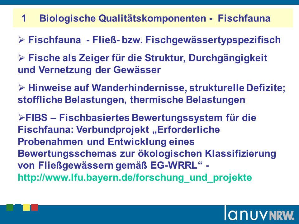 1 Biologische Qualitätskomponenten - Fischfauna Fischfauna - Fließ- bzw. Fischgewässertypspezifisch Fische als Zeiger für die Struktur, Durchgängigkei