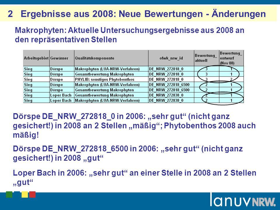 2 Ergebnisse aus 2008: Neue Bewertungen - Änderungen Makrophyten: Aktuelle Untersuchungsergebnisse aus 2008 an den repräsentativen Stellen Dörspe DE_N