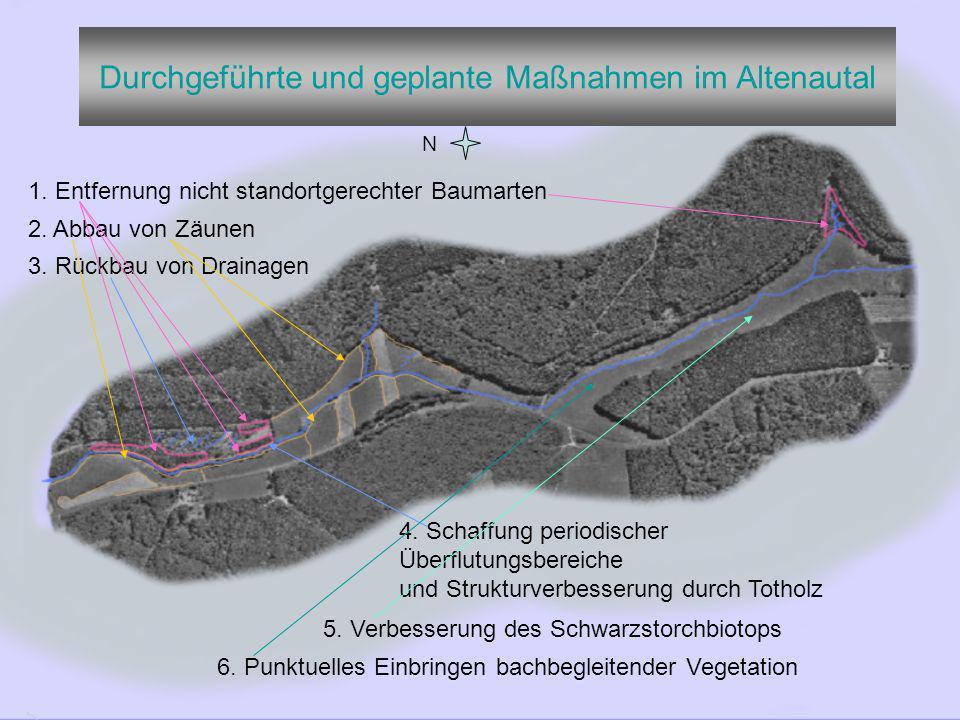 Durchgeführte und geplante Maßnahmen im Altenautal N 1.