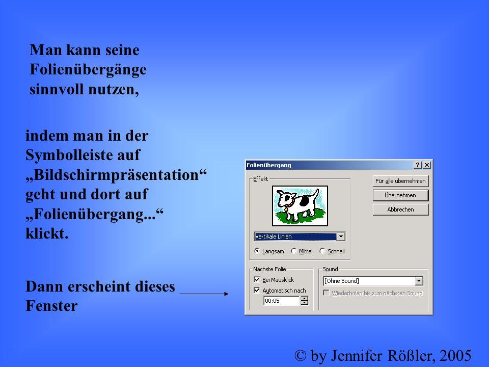 Dort kann man dann die gewünschten Effekte einstellen. f© by Jennifer Rößler, 2005