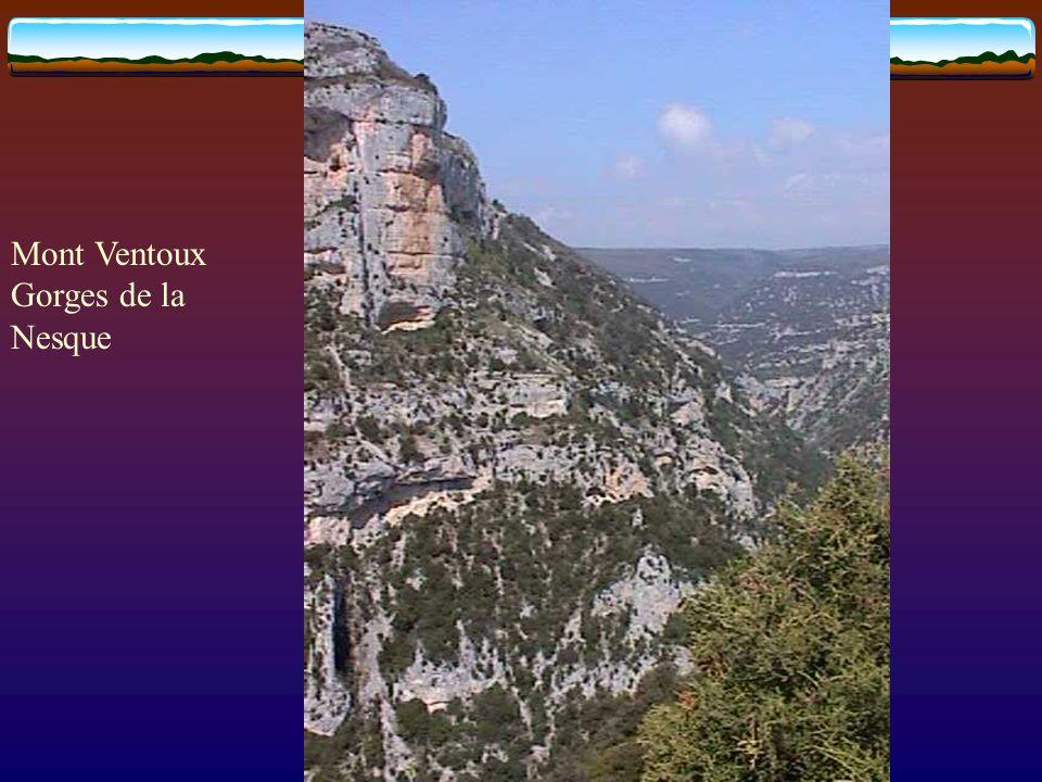 Mont Ventoux Gorges de la Nesque