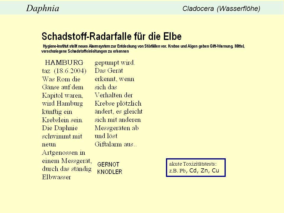 akute Toxizitätstests: z.B. Pb, Cd, Zn, Cu Daphnia Cladocera (Wasserflöhe)
