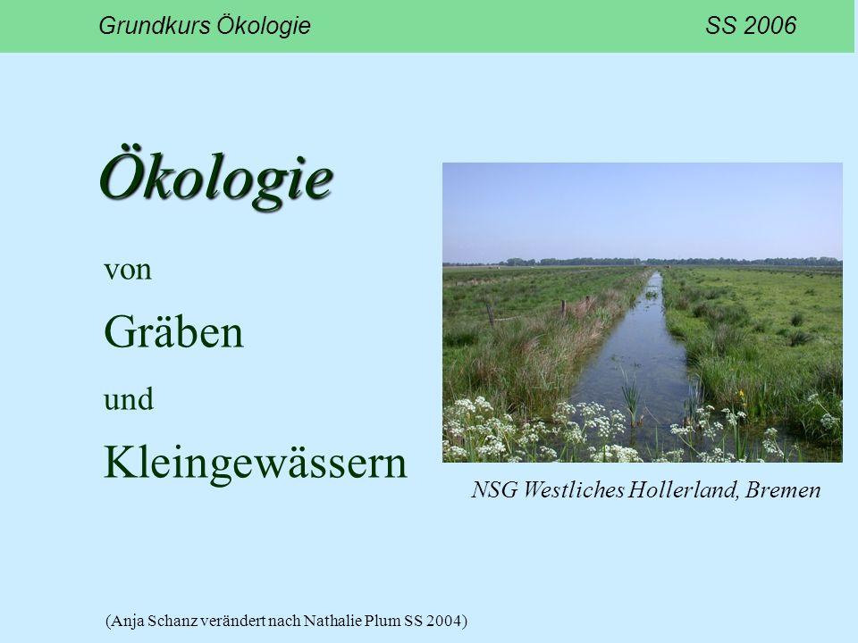 Ökologie von Gräben und Kleingewässern Grundkurs Ökologie SS 2006 NSG Westliches Hollerland, Bremen (Anja Schanz verändert nach Nathalie Plum SS 2004)