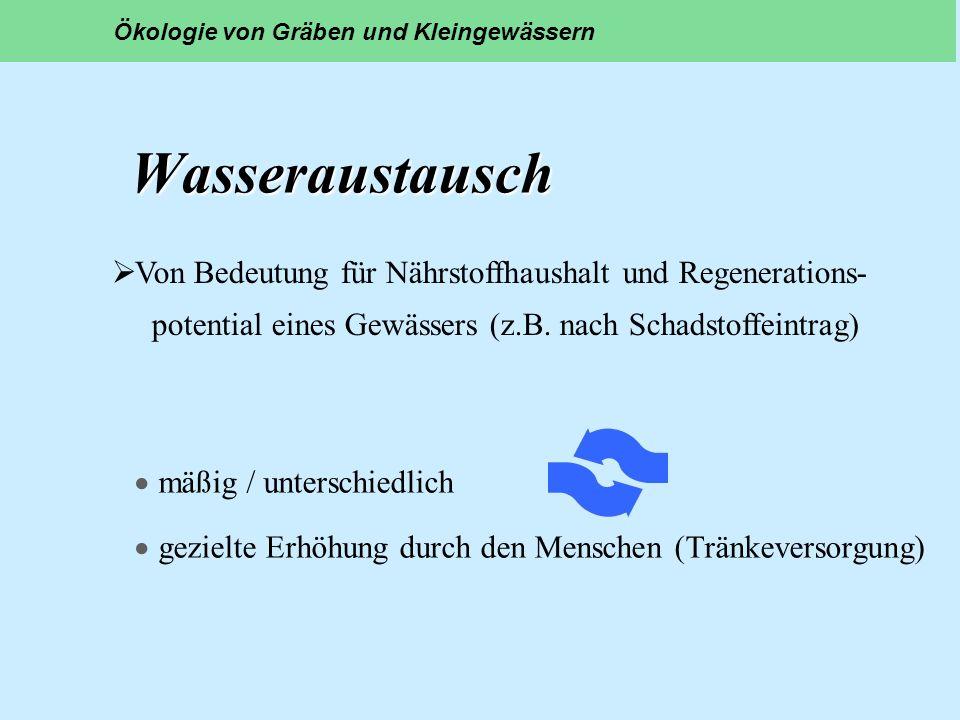 Wasseraustausch Wasseraustausch mäßig / unterschiedlich gezielte Erhöhung durch den Menschen (Tränkeversorgung) Ökologie von Gräben und Kleingewässern