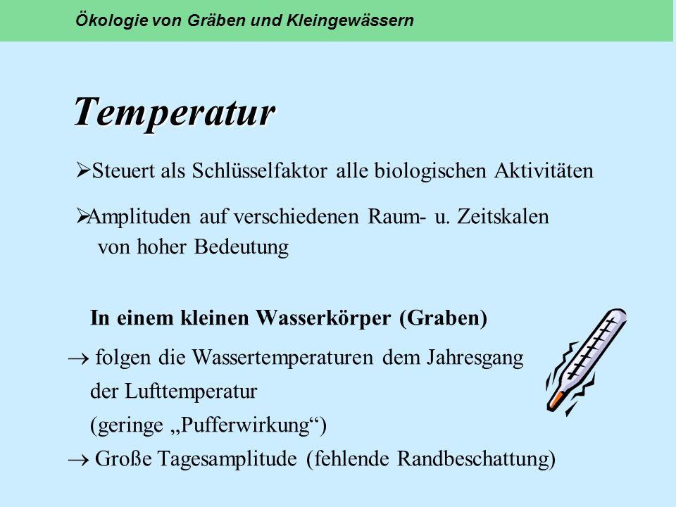 Temperatur In einem kleinen Wasserkörper (Graben) folgen die Wassertemperaturen dem Jahresgang der Lufttemperatur (geringe Pufferwirkung) Große Tagesa